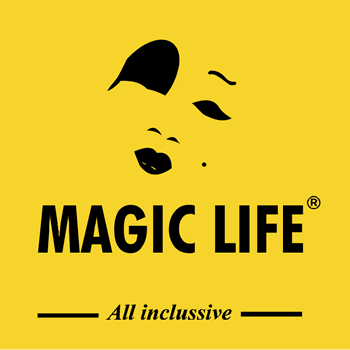 Helped writing a CV for Professionals from Magic Life